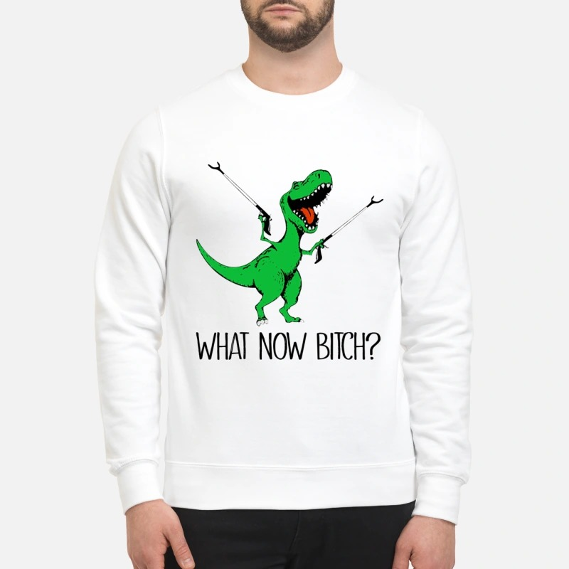 Dinosaur what now bitch mug and sweatshirt