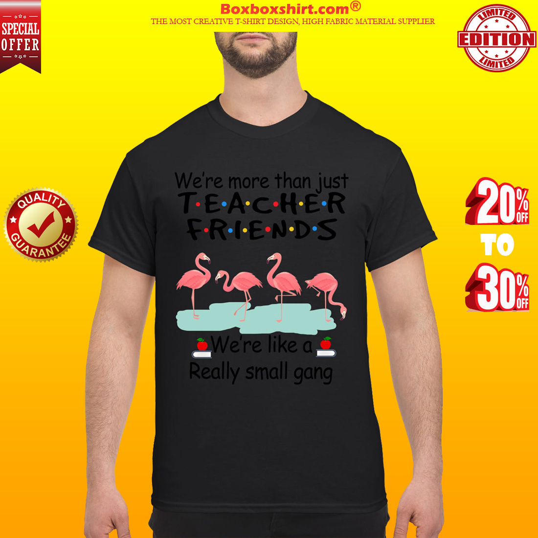 Flamingos We are more than just teacher friends we're like a small gang classic shirt